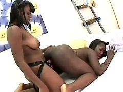 black lesbian secretary licks out beauty